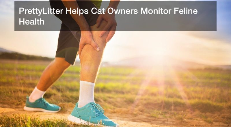 PrettyLitter Helps Cat Owners Monitor Feline Health
