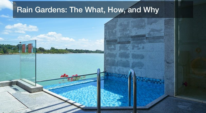 Rain Gardens: The What, How, and Why