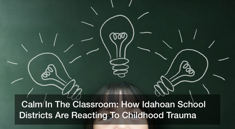 Calm In The Classroom: How Idahoan School Districts Are Reacting To Childhood Trauma