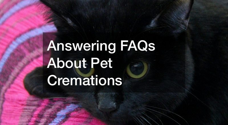 Answering FAQs About Pet Cremations